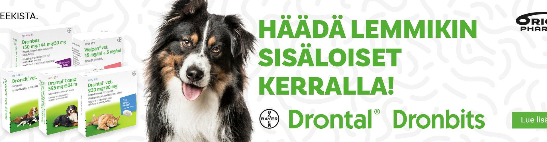 Lemmikkien sisäloisten häätöön Drontal, Dronbits, Welpan