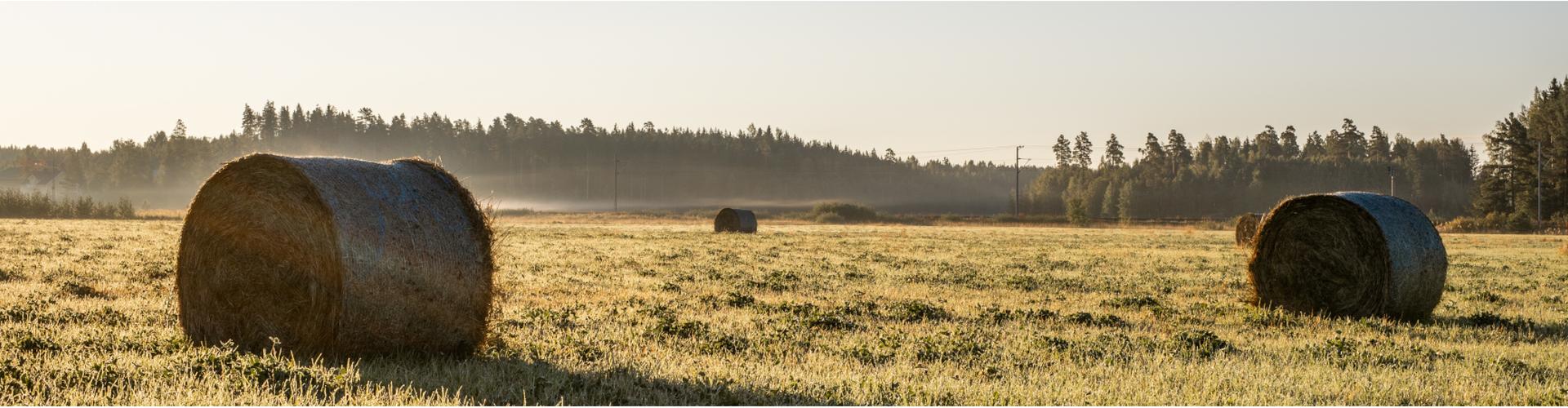 Pyöröpaaleja loimaalaisella pellolla