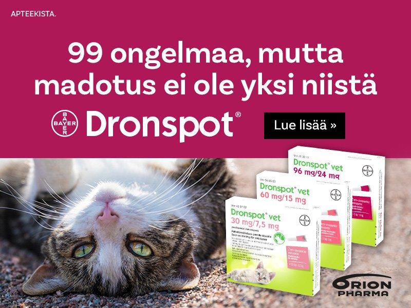 Dronspot helppo matolääke kissalle