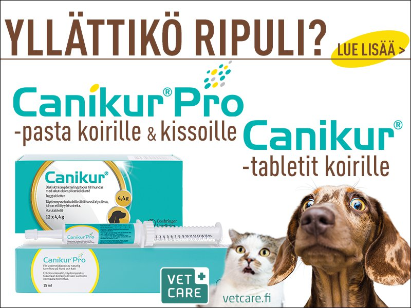 Canikur tarjous koiran ja kissan ripuli