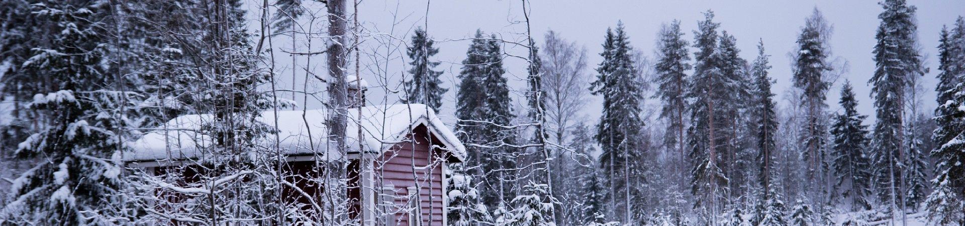 Apteekin talvi