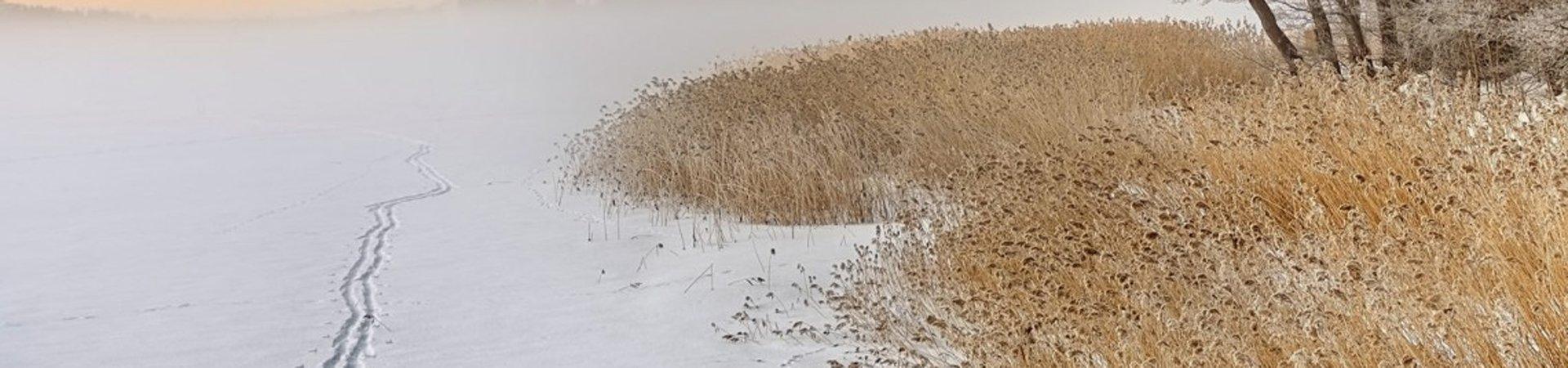 Talvimaisema jäällä