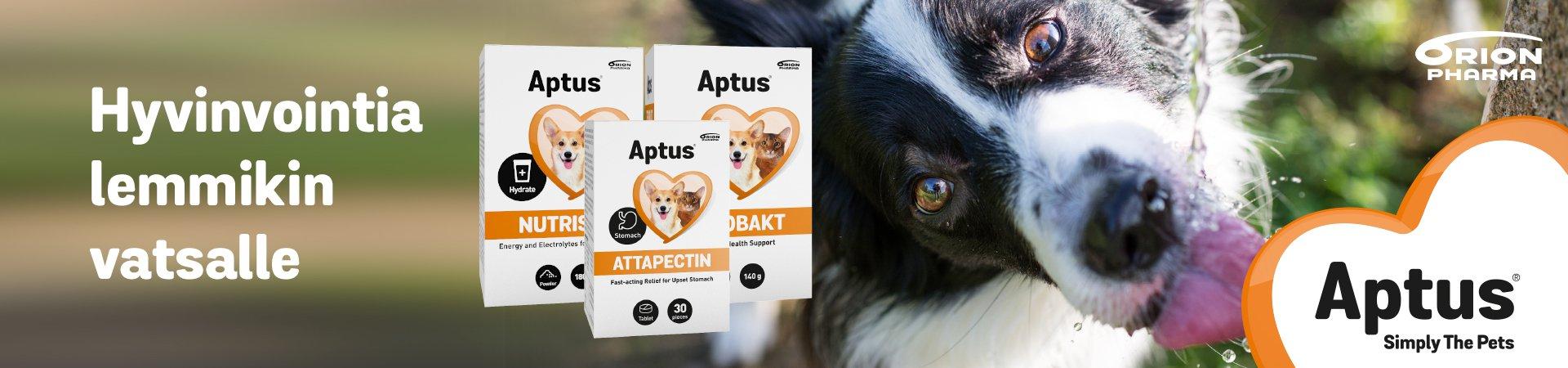 Aptus - hyvinvointia lemmikin vatsalle